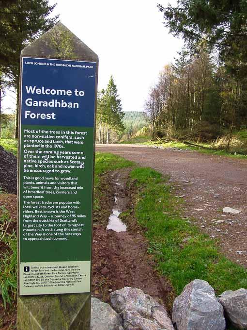 Walks Loch Lomond