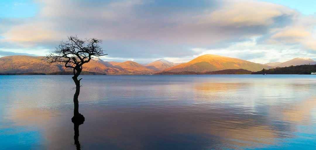 Milarrochy Bay Loch Lomond
