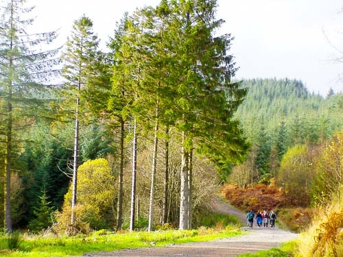 Short to Moderate Walks Loch Lomond and Trossachs